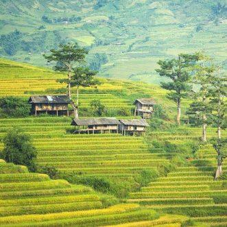 La Malaisie, une destination de rêve pour les amoureux de la nature