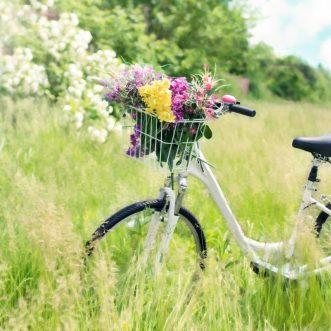 Vélos d'occasion. Vérifié et prêt à rouler.